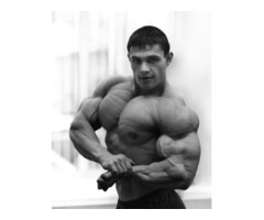 A Article On Vince Delmonte's No Nonsense Muscle Building