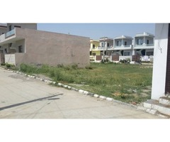 West Phaseing Plot In Venus Velly Colony Jalandhar