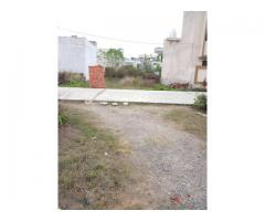 Best Plot For Sale In Amrit Vihar Jalandhar