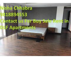 9 8 l 8 8 9 4 5 5 3 DLF Crest Apartments For Sale - Resale Price