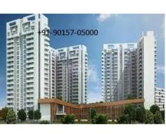 Ambience Creactions Apartments Sector 22 Gurgaon +91-90157-05000