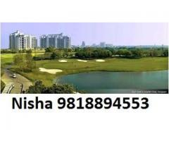 Nisha 98l8894553 DLF Crest Price DLF The Crest Gurgaon Apartments