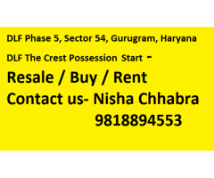 Nisha 9 8 l 8 8 9 4 5 5 3 DLF Crest Resale -Price - Gurugram